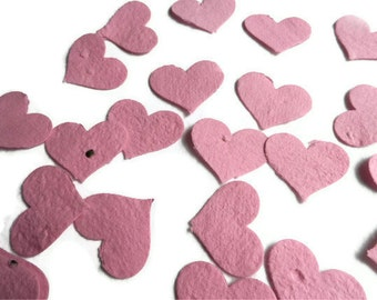 Wildflower Seed Paper Heart Confetti - 100 count - 1 1/2 inch