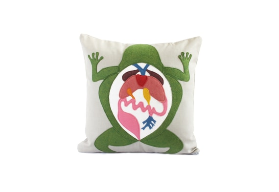 Science Diagram Pillow Frog Dissection Scientist Etsy