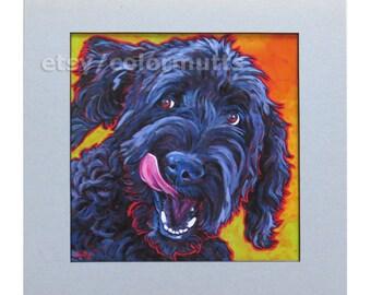 BLACK LABRADOODLE 14x14 Matted Dog Art Print by Lynn Culp
