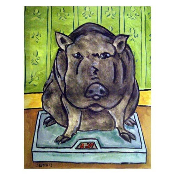 modern folk hogging the blankets 13x19 glossy photo Pot Belly Pig art