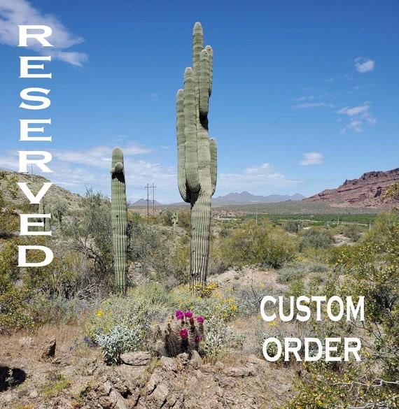 Custom Order for Isabel