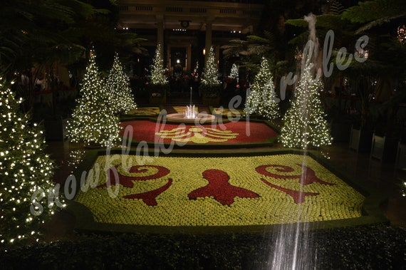 Longwood Gardens Christmas.Digital Picture Of Apple Christmas At Longwood Gardens