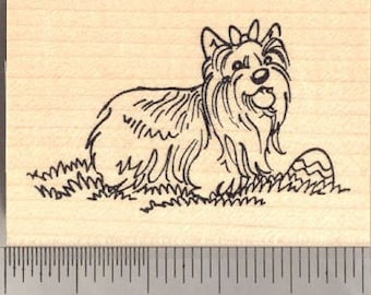 Yorkie Love Rubber Stamp Yorkshire Terrier Valentine/'s Day  G15910 WM