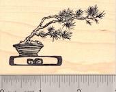 Windswept Bonsai Tree  Rubber Stamp K13811- Wood Mounted
