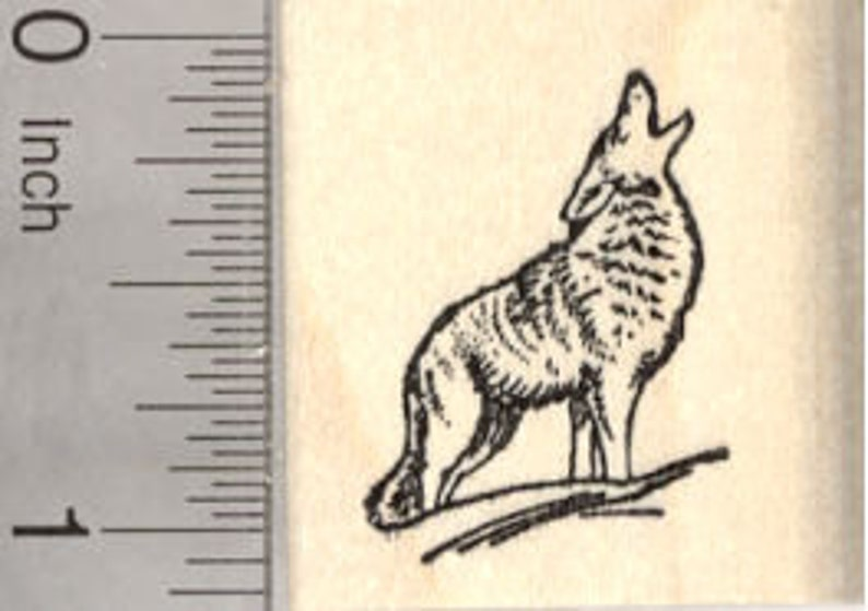 Howling Coyote Rubber Stamp Wildlife Small D26812 Wood image 0