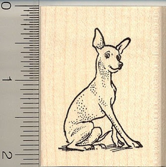 Poodle dog rubber stamp H10308 Wood Mounted show breed