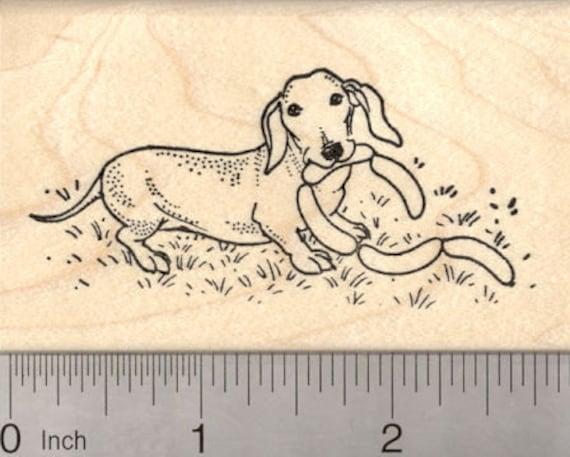 Dachshund Weiner Dog Rubber Stamp J7209 Wood Mounted