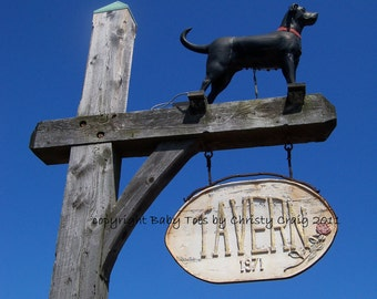 Black Dog Tavern - Martha's Vineyard, MA