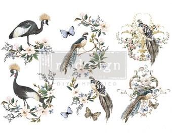 RARE BIRDS– 3 SHEETS, 6″X12″ - ReDesign with Prima Decor Transfer®