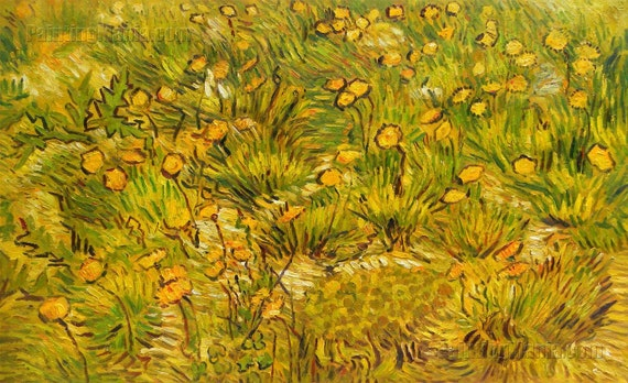 A Field of Yellow Flowers Vincent van Gogh