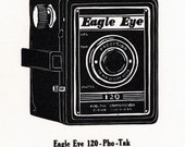 Eagle Eye 120 - letterpress linoleum print - life size