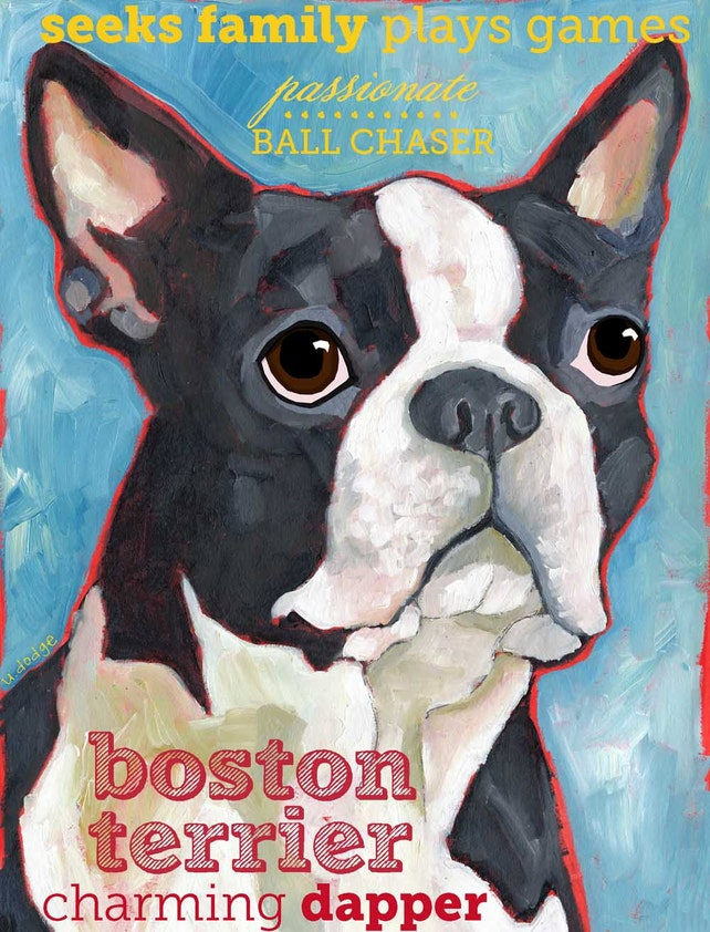 Boston Terrier No. 1 - Set of 6 Blank Cards with Envelopes in a Clear sleeve