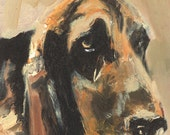 PSPCA Series: Basset Hound