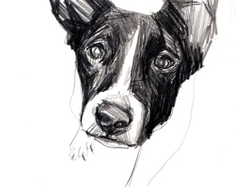 Anonymous Shelter Dog: Giclee print