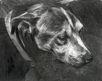 Giclee Print of Shelter Dog Series: Rusty