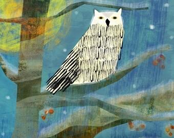 Winter Owl - giclee print of original illustration 11 x 14