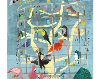 Zoo Birds Giclee Print 11 x 14