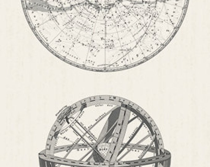 ENCYCLOPEDIA Historica Star Atlas GALACTICA GLOBES Neutral White Astronomical Illustration Space Quilt Fabric - by the Panel