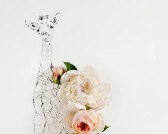 baby giraffe_no_1