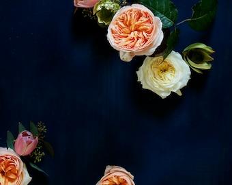 dark botanical_no_51