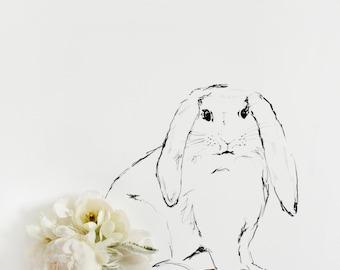 baby bunny_no_1