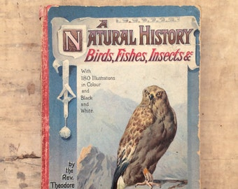 early 1900s natural history book by the Rev. Theodore Wood