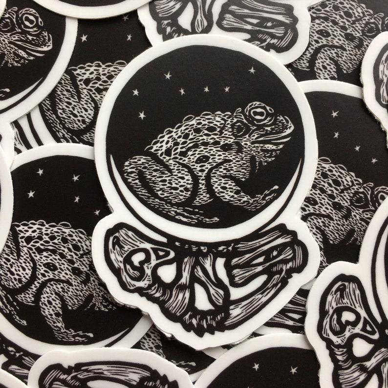 Toad Moon Skeleton indoor/outdoor vinyl image 0
