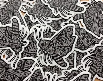 Moth sticker indoor/outdoor vinyl