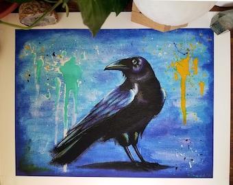12x9 Raven photographic Print