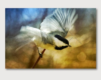 Blurred Chickadee Bird Flying Wrapped Canvas Print, Black Capped Chickadee Semi Abstract Golden Yellow and Blue Semi Abstract Nature Photo