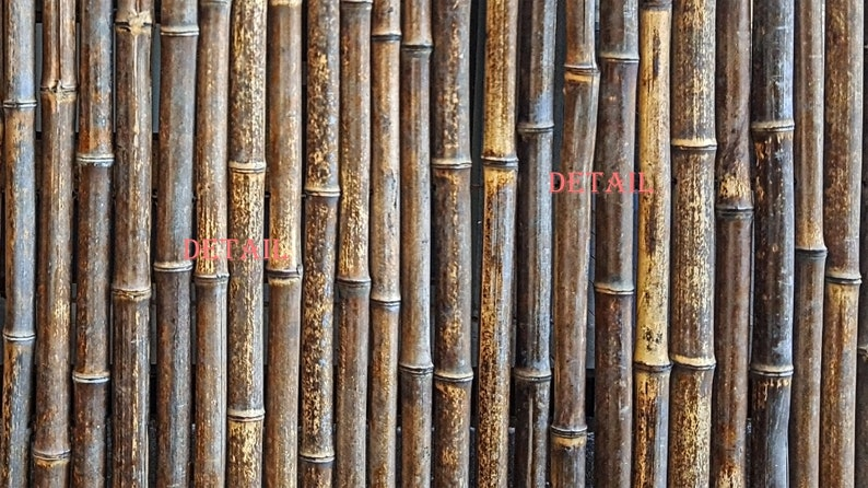 Distressed Bamboo Stalks Wall Digital Photo Wood Texture image 0