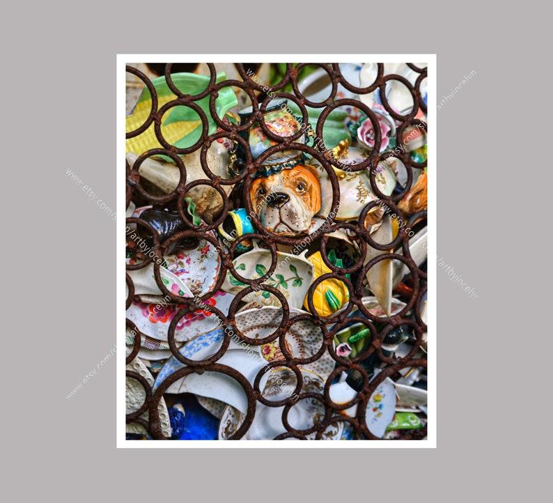 Salvaged Broken China Urban Grunge Photo Print Ceramic Hound image 0