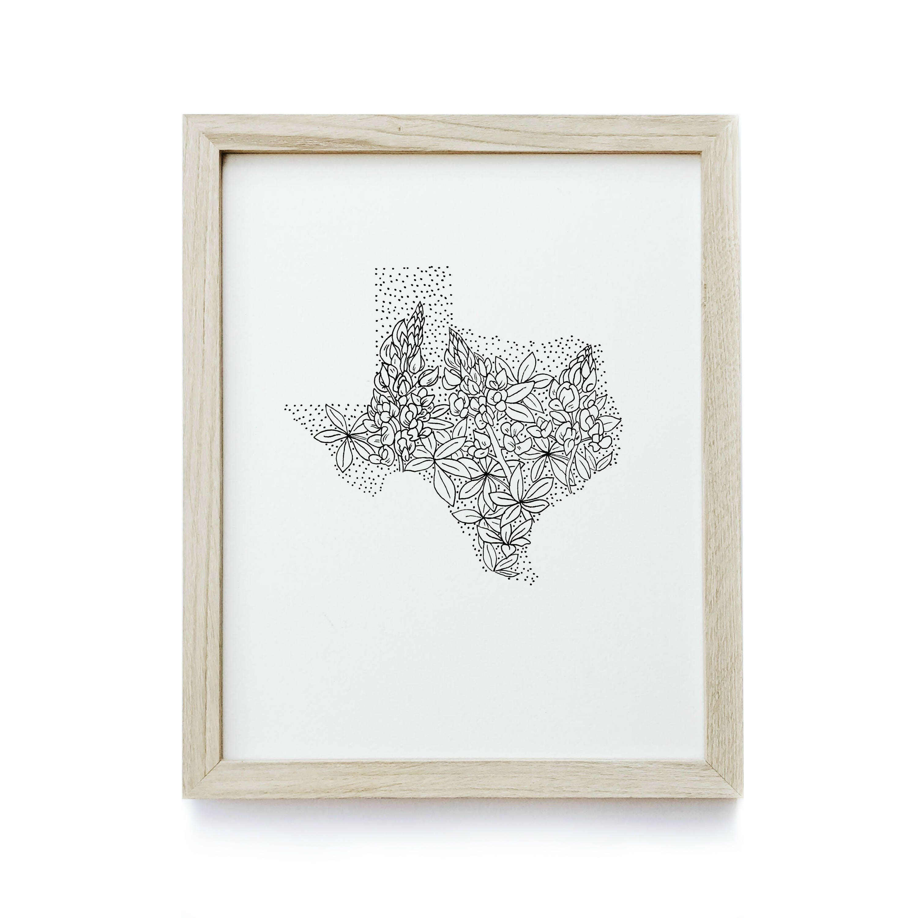 Texas state flower drawing 2