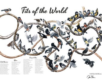 Tits of the World, signed print