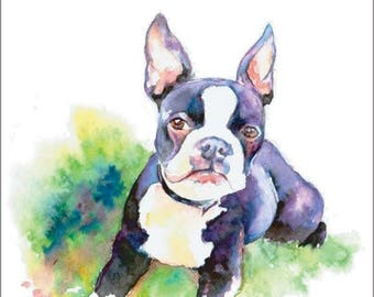 Boston Terrier Puppy Dog Watercolor Print Pet Portrait