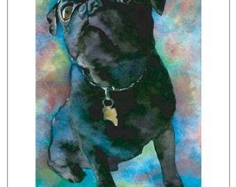 Black Pug Dog Poster Model - Fine Art Pet Portrait Giclee Print