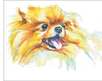 Red Pomeranian Long Haired Puppy Dog Watercolor Print Pet Portrait