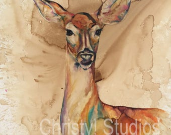 Doe - White Tailed Deer, Illinois - Fine Art Watercolor and Coffee Print