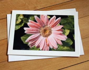 Daisy Greeting Card, Flower Card, Blank Greeting Card, Note Card, Any Occasion, Birthday Card, Envelope, Photography, Photograph, Pink