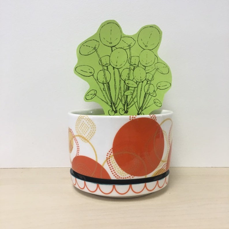 handmade porcelain planter Meredith Host modern home decor image 0
