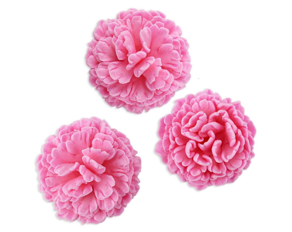 Pink Carnation Gum Paste Flowers Pink Gum Paste Flowers Etsy
