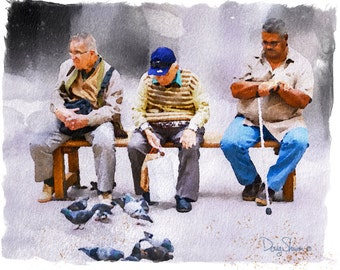Feed the Birds (birds, malta, watercolor, friendly, men, europe, wall art, decor, )
