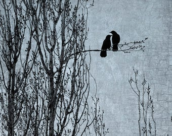 Crow Togetherness: Love's Delicate Balance - Signed Fine Art Photographic Collage by June Hunter - Crow Art