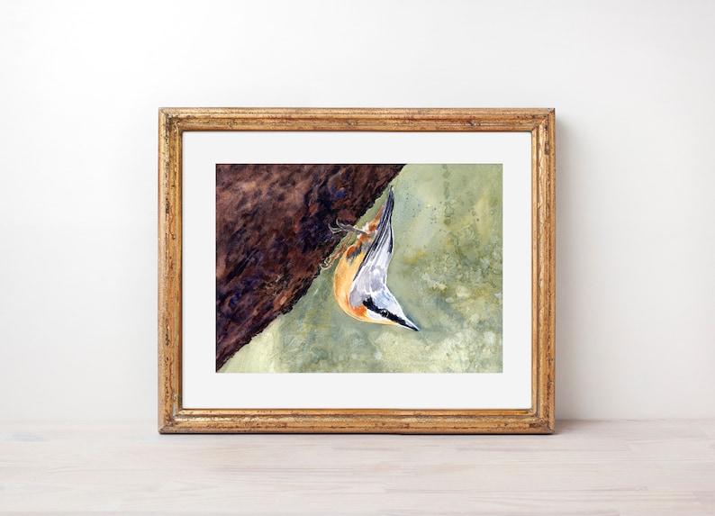 Wall Decor Nuthatch Art Bird Art Original Watercolor