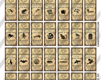 Digital Collage Sheet Altered Art Domino Potion Labels Halloween 1X2 inches (Sheet No. FS173) Instant Download