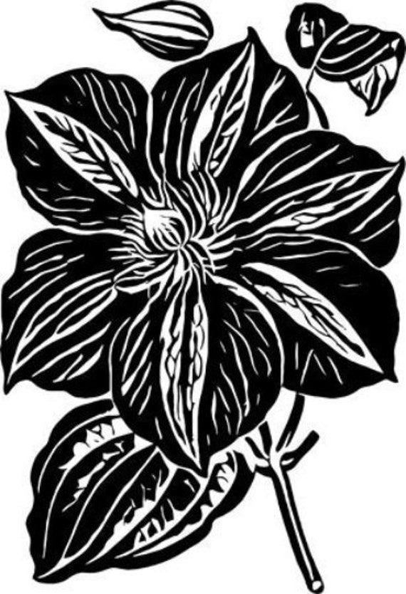 big flower png jpg plant art printable download digital image graphics downloadable transfers garden nature digital stamp