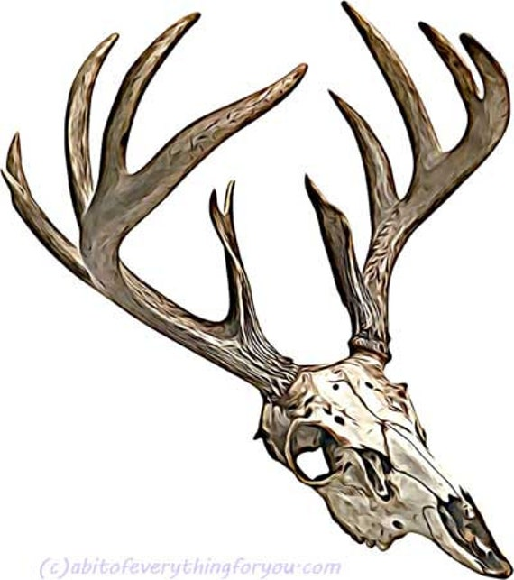 deer buck antlers skull printable animal art print clipart png download digital image graphics downloadable nature wildlife art