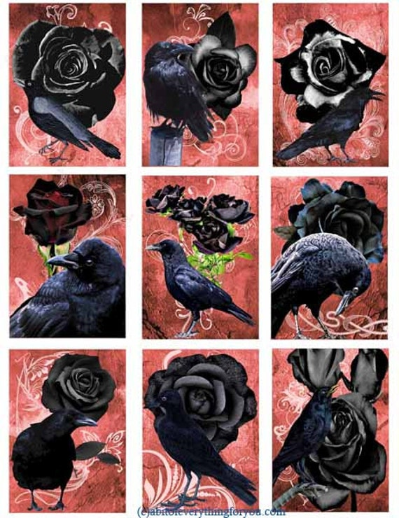 "black crow birds black roses goth collage sheet digital download 2.5"" x 3.5"" graphics downloadable images animal printables diy crafts aceo"