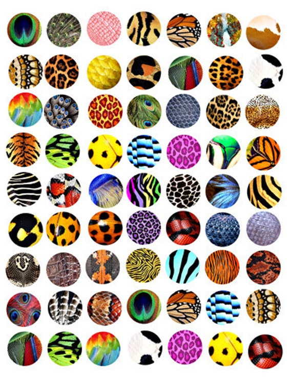 """animals insects patterns textures fur scales feathers clipart digital download  1"""" inch circles collage sheet graphics images printables"""