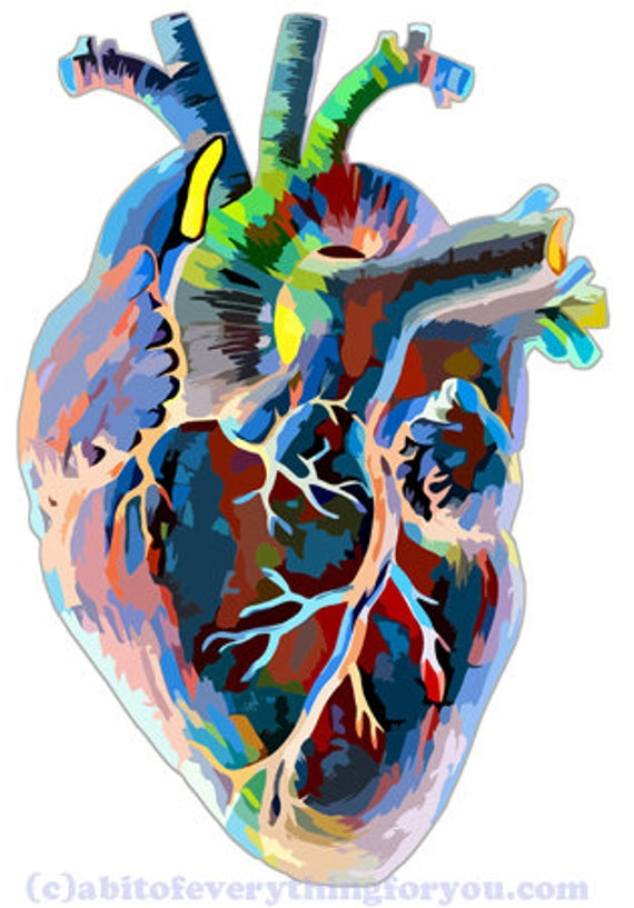 colorful abstract human anatomy Heart digital download png jpg svg printable art image graphics